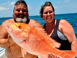 Recreational red snapper season to close Aug. 13