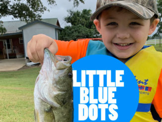 Map out those 'little blue dots' — small ponds
