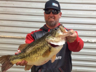 Bart Blakelock's 10.61-pound Toledo Bend bass hit a small crankbait on March 12.