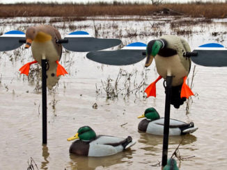 Spinning wing decoys are duck magnets, but only if the wings are spinning. Maintenance helps keep them working and the ducks coming.