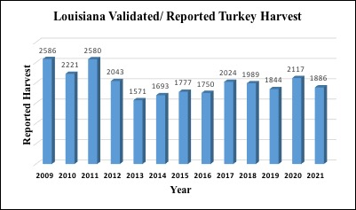 Turkey harvest from 2009-2021. (Graph courtesy LDWF)