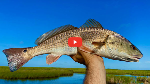 Wanna catch fish in the marsh? You gotta do this