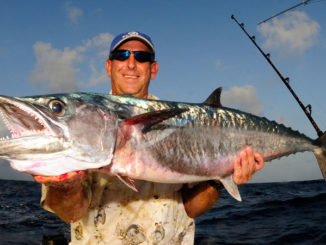 """Big king mackerel are often referred to as """"smokers"""" for their ability to """"smoke"""" line off a reel."""